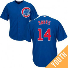 YOUTH Ernie Banks #14 Chicago Cubs Replica Alternate Royal Cool Base Jersey